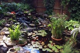 Ponds, Waterfalls, Rock Gardens